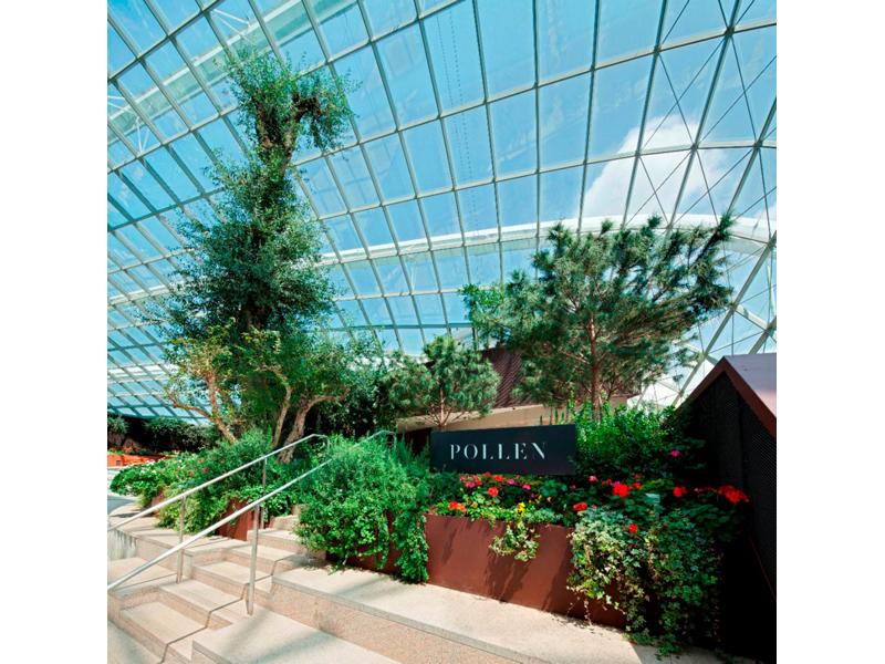 pollen indoor garden