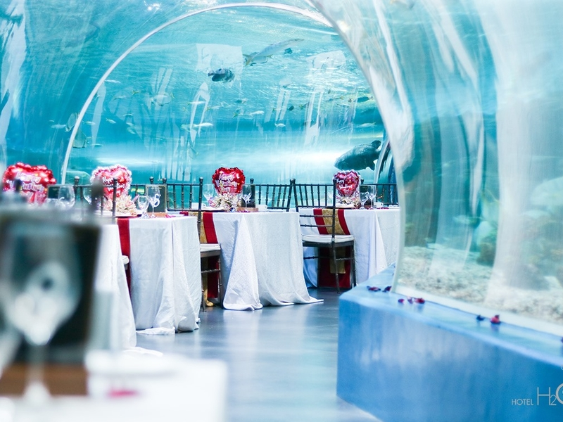 anniversary event space surrounded with aquarium