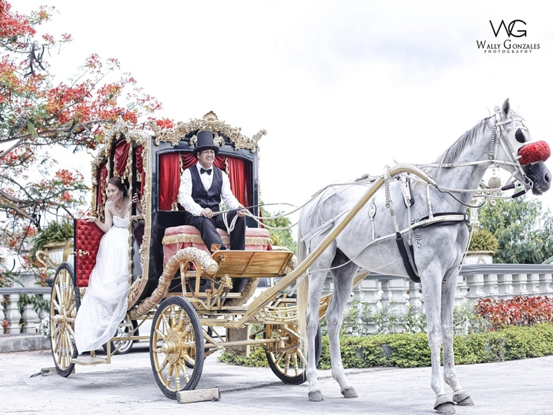 horse dragging carriage with bride inside