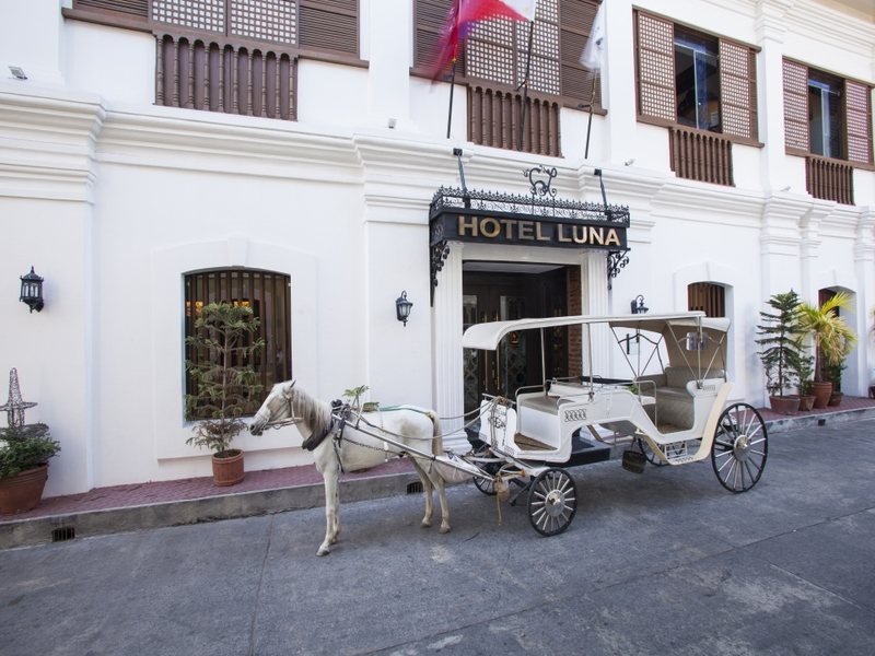 white horse carriage in front of hotel's building