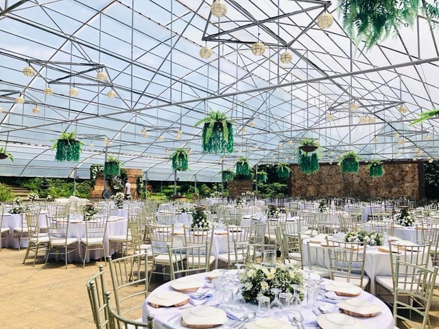semi glass house of wedding venue with a lot of hanging plants and bulb on the ceiling
