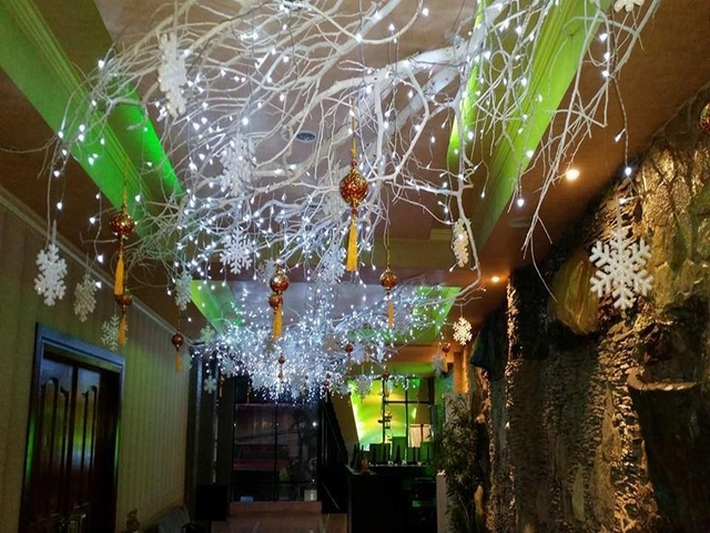 fairy lights on trees decoration for christmas party