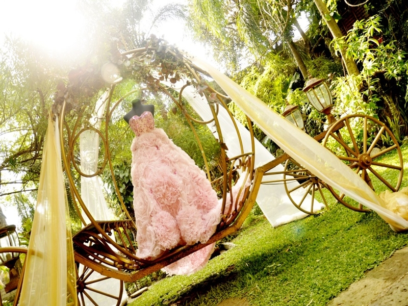 wedding dress; carriage in garden