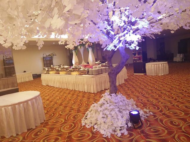 bellagio ballroom wedding function venue paket seminar jakarta
