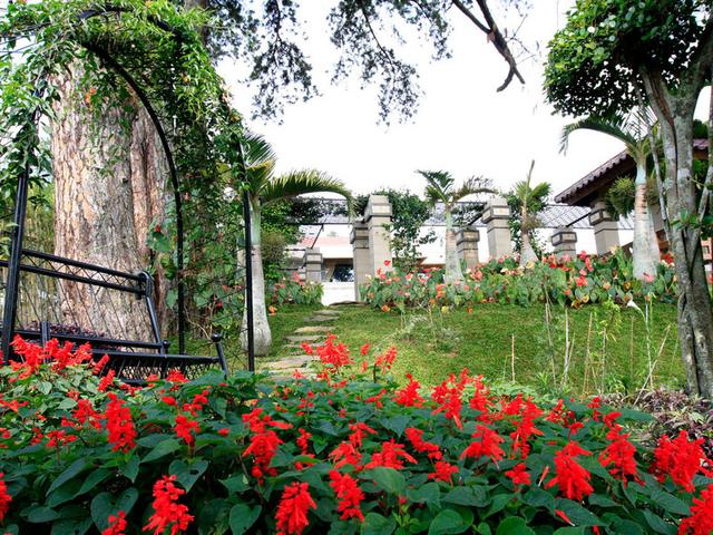 the michael house wedding by the garden bogor