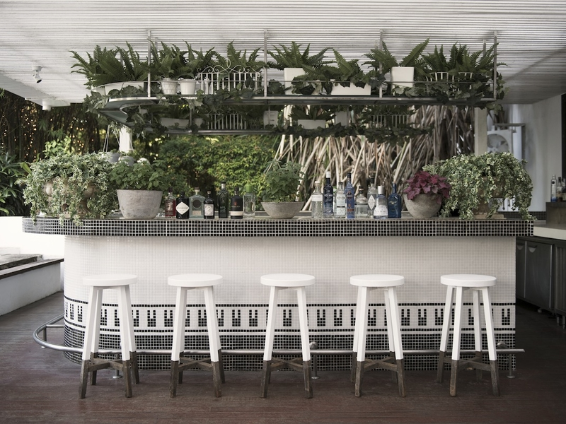 white bar counter in singapore with mini garden decorations