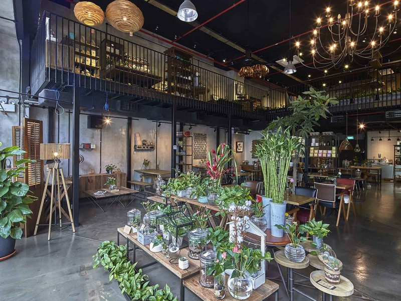 singapore cafe with green themes and garden environment