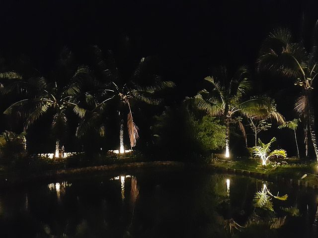romantic night view of villa's pool with tree surrounds