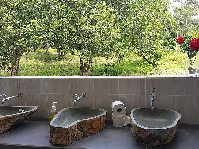 semi-outdoor wash basin with garden view