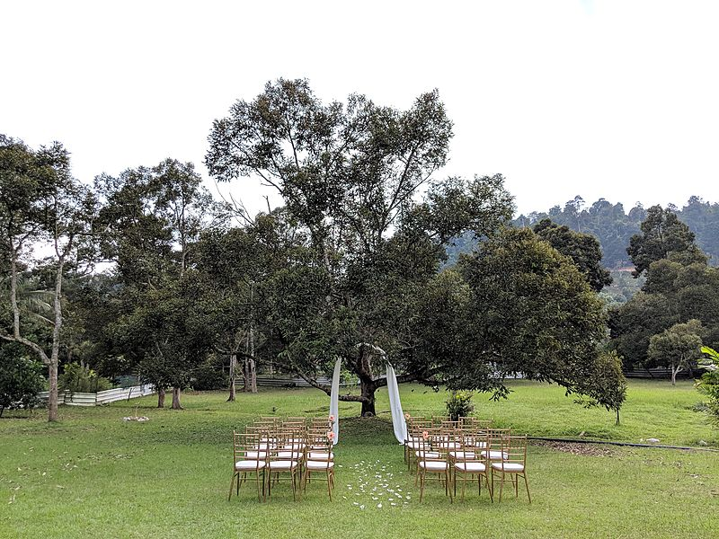intimate garden wedding venue with simple white decoration and trees background