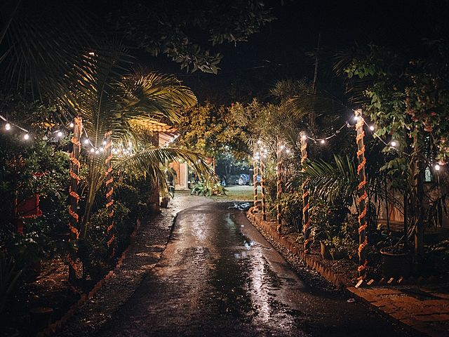 villa's small road with tree surrounds it and fairy lights