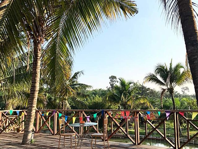 outdoor party area in pahang with coconut trees surrounds and river view