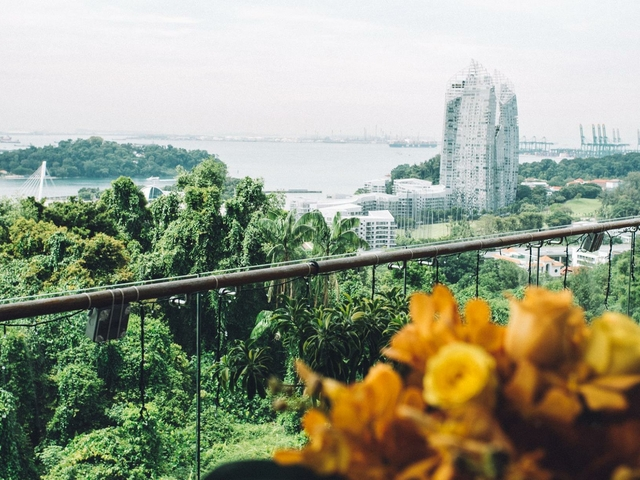 the forest and sea view from mount faber peak singapore