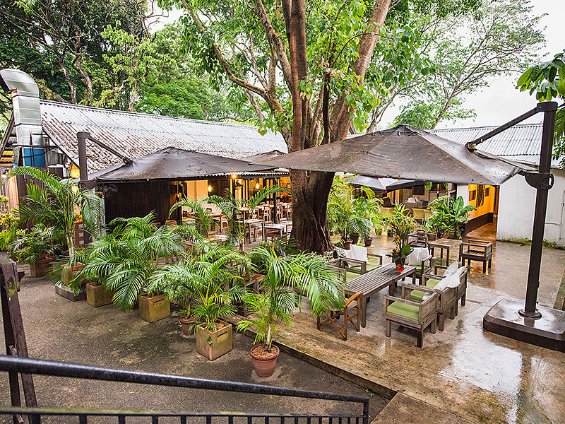 outdoor restaurant covered with roof tent and plant surround