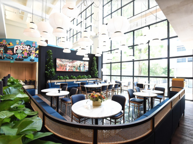 multi-sensory dining concept with ceiling to floor windows