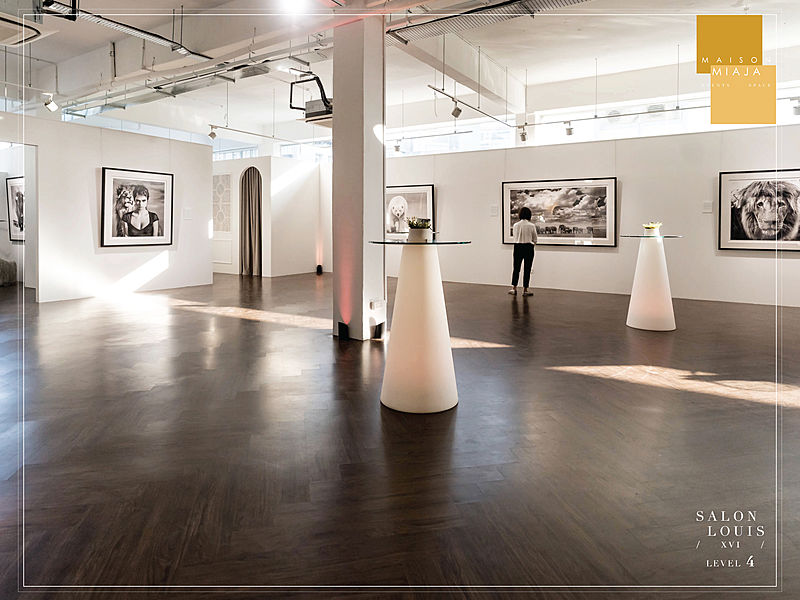 art gallery with photography exibition for standing event party