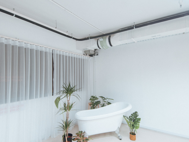 white-themed bathroom decorated with plants and curtain