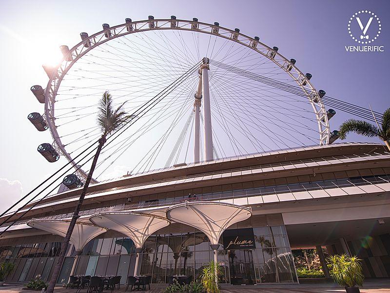 singapore bigger ferris wheel