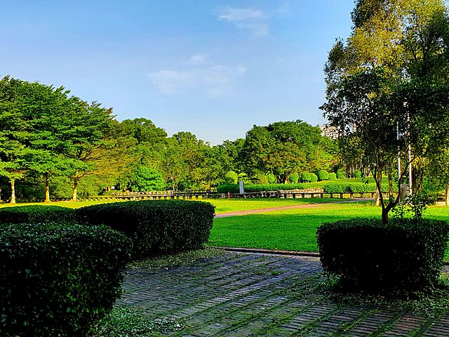 large garden event space with big trees surrounds
