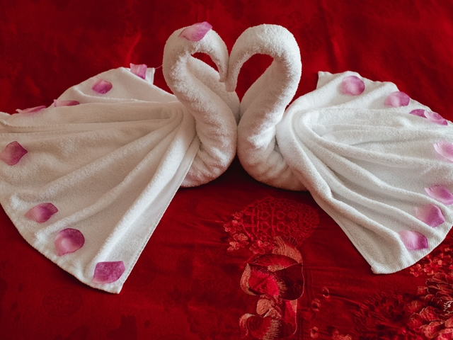 swan towel for bridal room on the bed