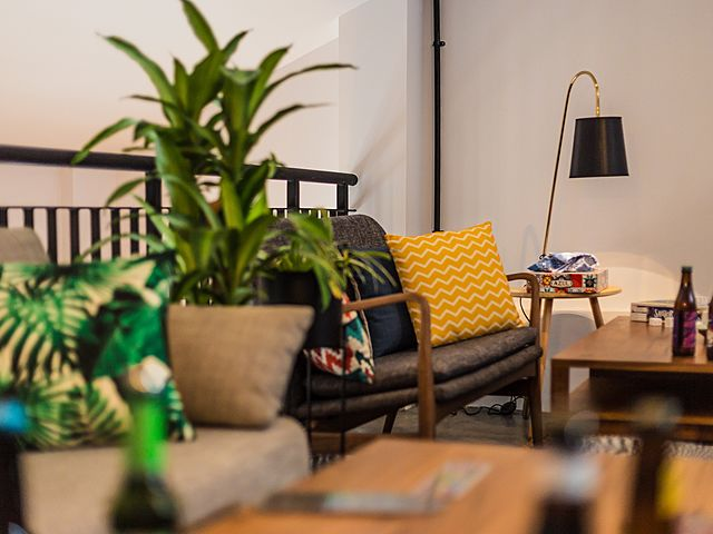 restaurant with casual set up with couch and plant