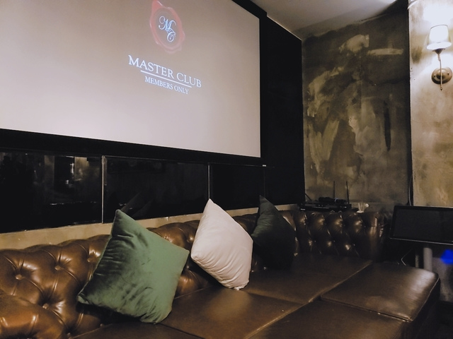 leather sofa with cushions; projector screen