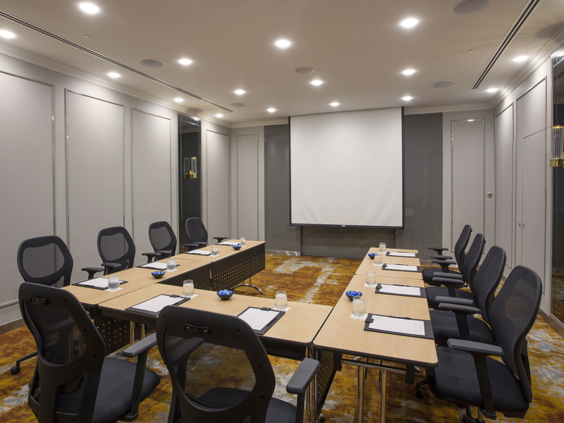 small meeting room for 12 capacity