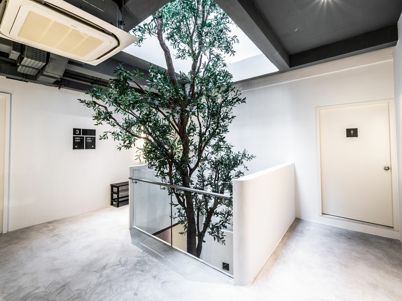 white interior hotel in singapore with tree inside the building