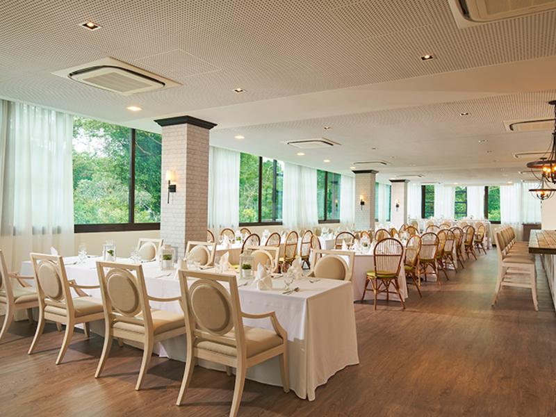 private room showcase the beautiful heritage greenery of changi