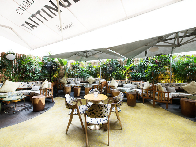 a garden oasis of lush greenery and sculpted furniture